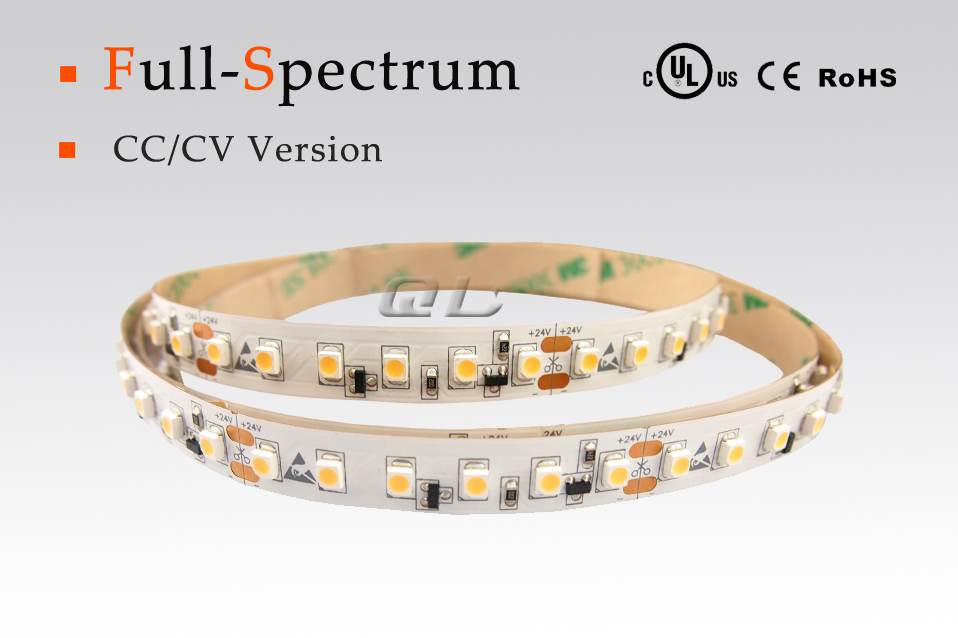 Full Spectrum 3528 LED Strips